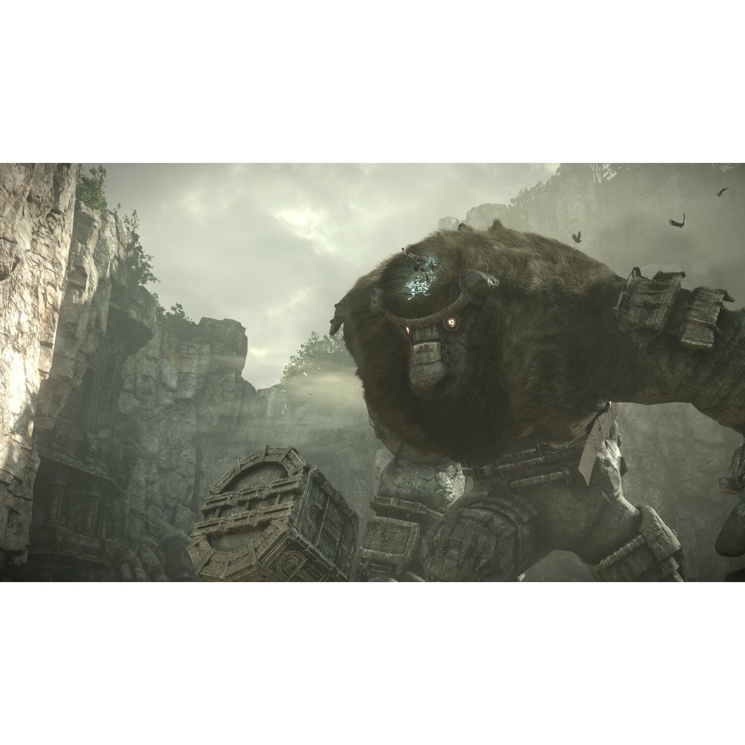 Gra PS4 Shadow of the Colossus